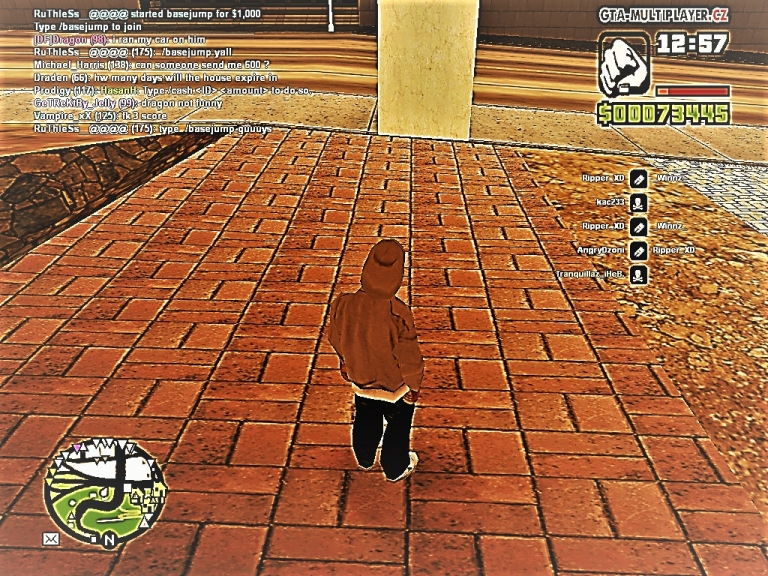 GTA: San Andreas samp
