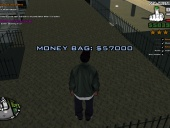 Los Santos International moneybag location